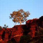 Special3_DE_Australien_Bild1